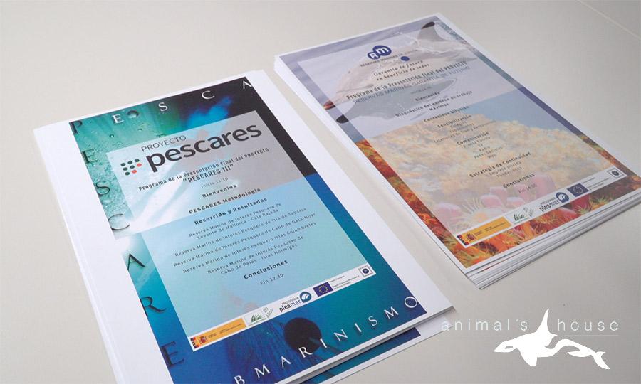 Presentación Final del Proyecto Pescares